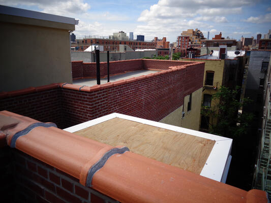 An Unpleasant Surprise on a Harlem Roof